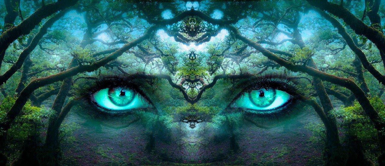 Perceptie verandering